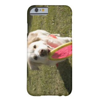 A dog with a frisbee barely there iPhone 6 case