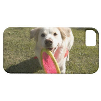 A dog with a frisbee iPhone SE/5/5s case