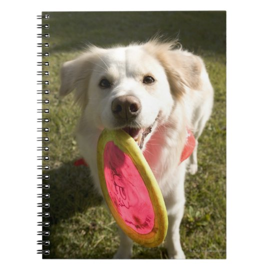 A dog with a frisbee notebook