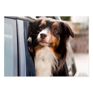 A Dog With Her Head Out of a Car Window Large Business Cards (Pack Of 100)