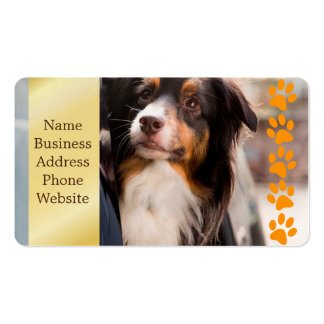 A Dog With Her Head Out of a Car Window Double-Sided Standard Business Cards (Pack Of 100)