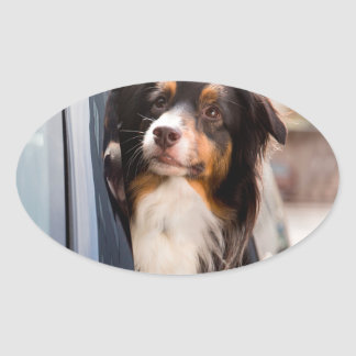 A Dog With Her Head Out of a Car Window Oval Sticker