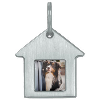 A Dog With Her Head Out of a Car Window Pet Name Tag