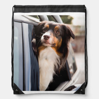 A Dog With Her Head Out of a Car Window Backpack