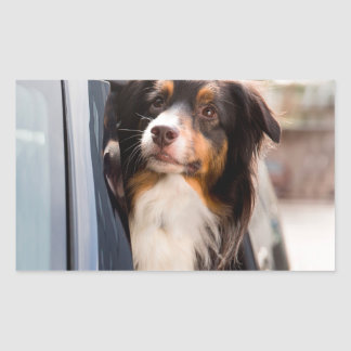 A Dog With Her Head Out of a Car Window Rectangular Sticker