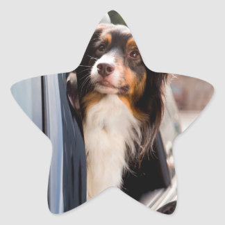 A Dog With Her Head Out of a Car Window Star Sticker