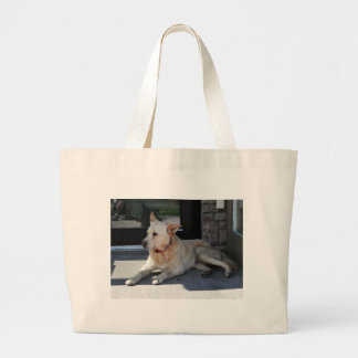 A Dog WIth Story Bag