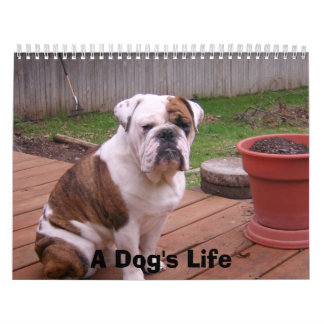 A Dog's Life Calendar