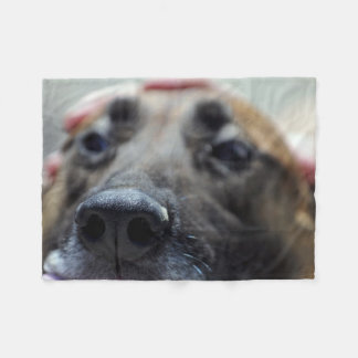 A Dogs Sense of Smell Fleece Blanket