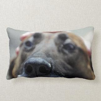 A Dogs Sense of Smell Lumbar Pillow