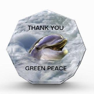 A dolphins best smile acrylic award