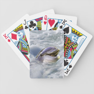A dolphins best smile bicycle playing cards