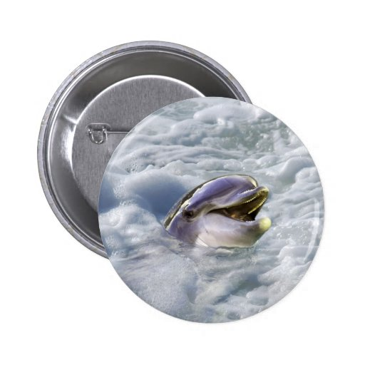 A dolphins best smile pinback button