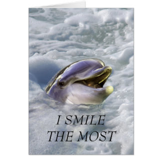 A dolphins best smile card