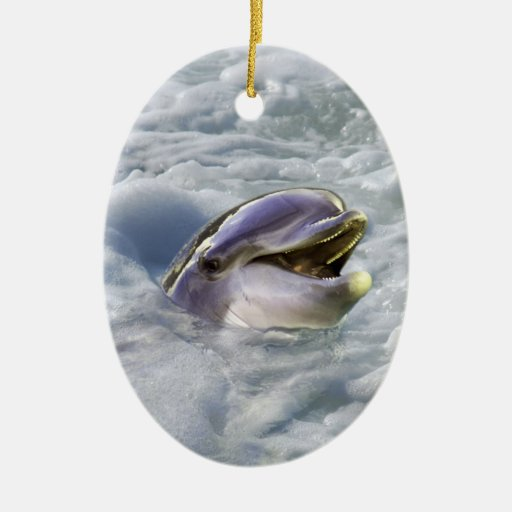 A dolphins best smile ceramic ornament