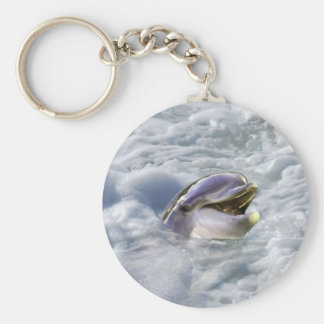 A dolphins best smile keychain