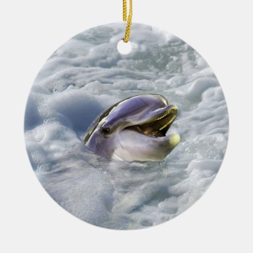A dolphins best smile christmas ornaments