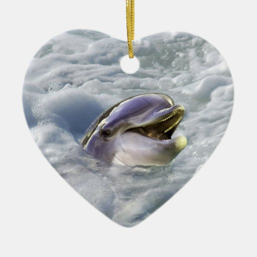 A dolphins best smile ornaments