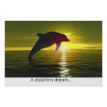 A dolphin's dream poster