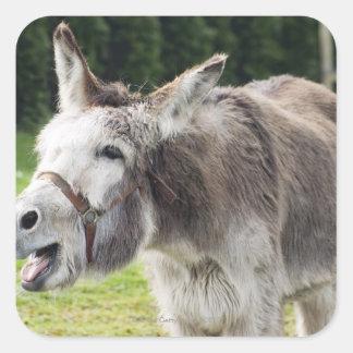 A donkey square sticker