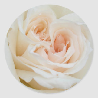 A Double Hearted Romantic White Rose Classic Round Sticker