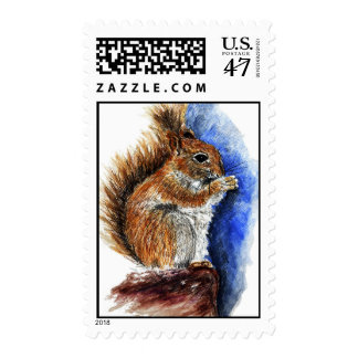 A Douglas Squirrel, watercolor pencil sketch Stamp
