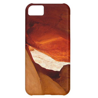 A DRAGON HIDEOUT CASE FOR iPhone 5C