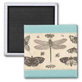 A dragonfly, ladybirds, and butterflies magnet