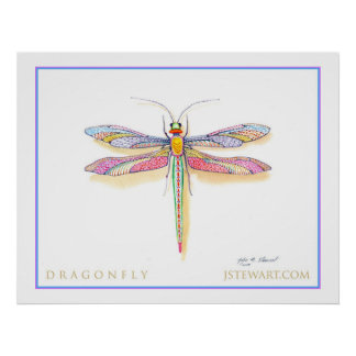 A Dragonfly Poster
