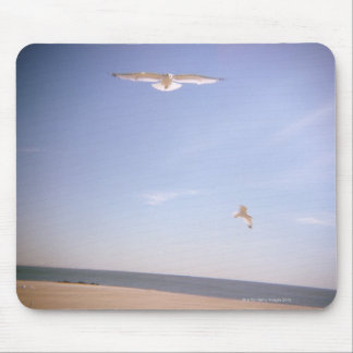 a dreamy image of seagulls flying at the beach mouse pad