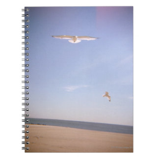 a dreamy image of seagulls flying at the beach notebook
