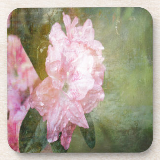 A Dreamy Pink Azalea Coaster