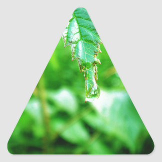 A Drop Of Joy Triangle Sticker