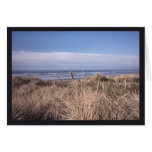 A Dry Dune Grass Day Greeting Cards