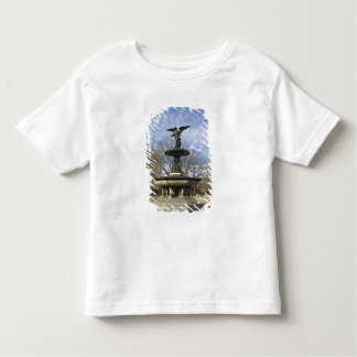 A dry winter Bethesda Fountain in Central Park Toddler T-shirt