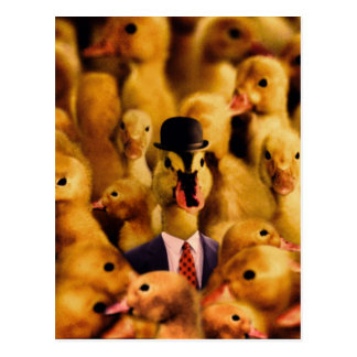 A Duck In A Bowler Hat And Suit And Tie Postcard