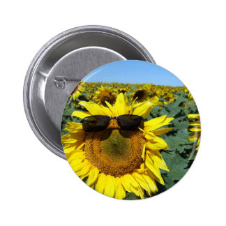 A Face in the Crowd Pinback Buttons