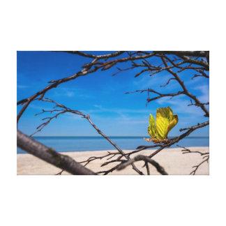 A fallen tree on the Baltic Sea coast Canvas Print