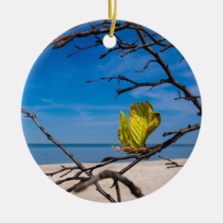 A fallen tree on the Baltic Sea coast Ceramic Ornament