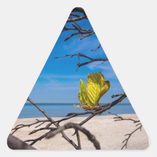 A fallen tree on the Baltic Sea coast Triangle Sticker