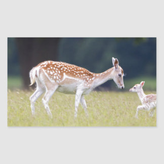 A Fallow Deer (Doe) with Fawn Rectangular Sticker