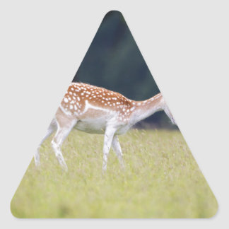 A Fallow Deer (Doe) with Fawn Triangle Sticker