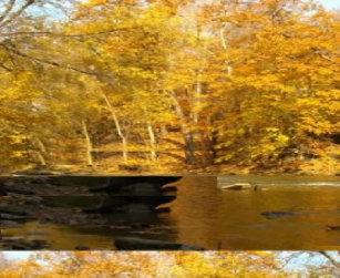 A FallsThrow Wham-O Frisbee 2a96818174c0