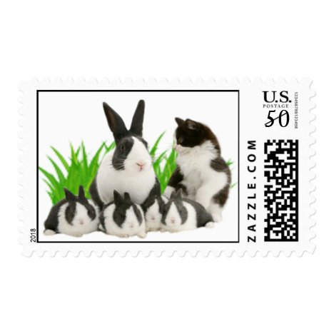 A Family Of Rabbit And A Cat Post Stamps