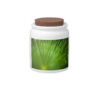 A Fan of Green Candy Jar