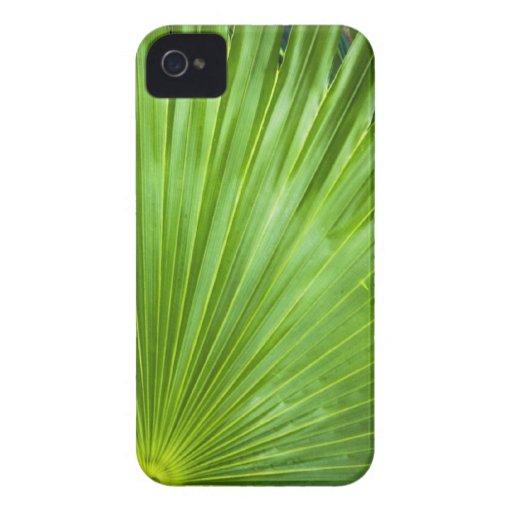 A Fan of Green Case-Mate Blackberry Case