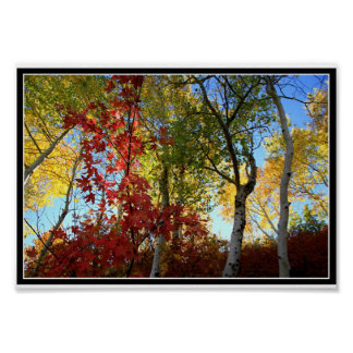A Fantastic Fall (with border) Poster