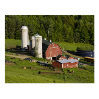 A farm in Barnet Center, Vermont. Connecticut Postcard
