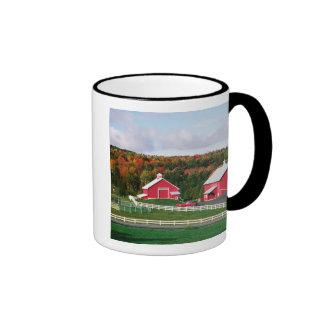 A farm in Vermont near Peacham. RELEASE Mug