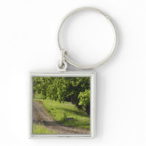 A farm road in Ipswich, Massachusetts. Keychain